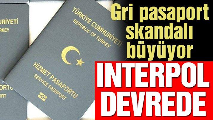 Türkiye'nin gri pasaport skandalının bedeli