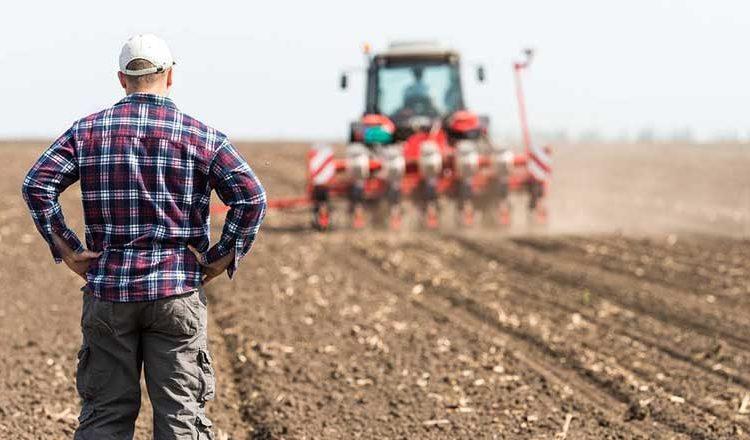 46 bin çiftçi tarlalarını terk etmek zorunda kaldı