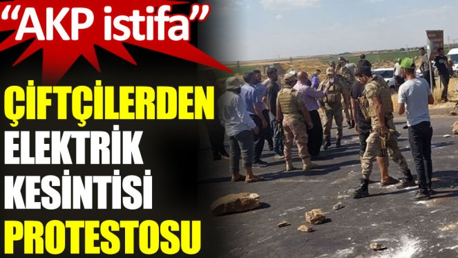 Türk çiftçiler hükümetin istifasını talep ettikleri için tutuklandı