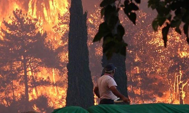 Muğla ormanlarında 5 yangın devam ediyor