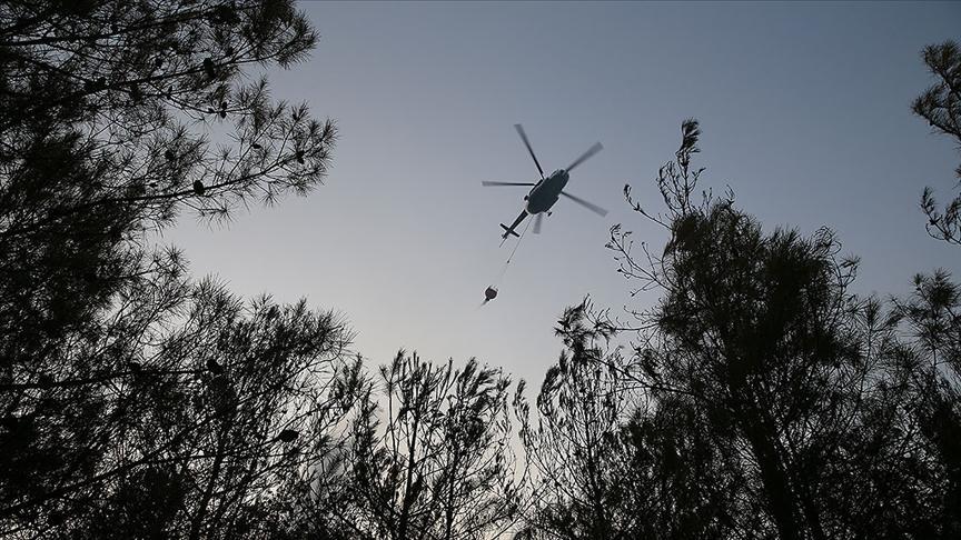 Orman Genel Müdürlüğünün skandalı